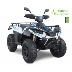 Elektriline ATV / mopeed Linhai LH40DA L6e