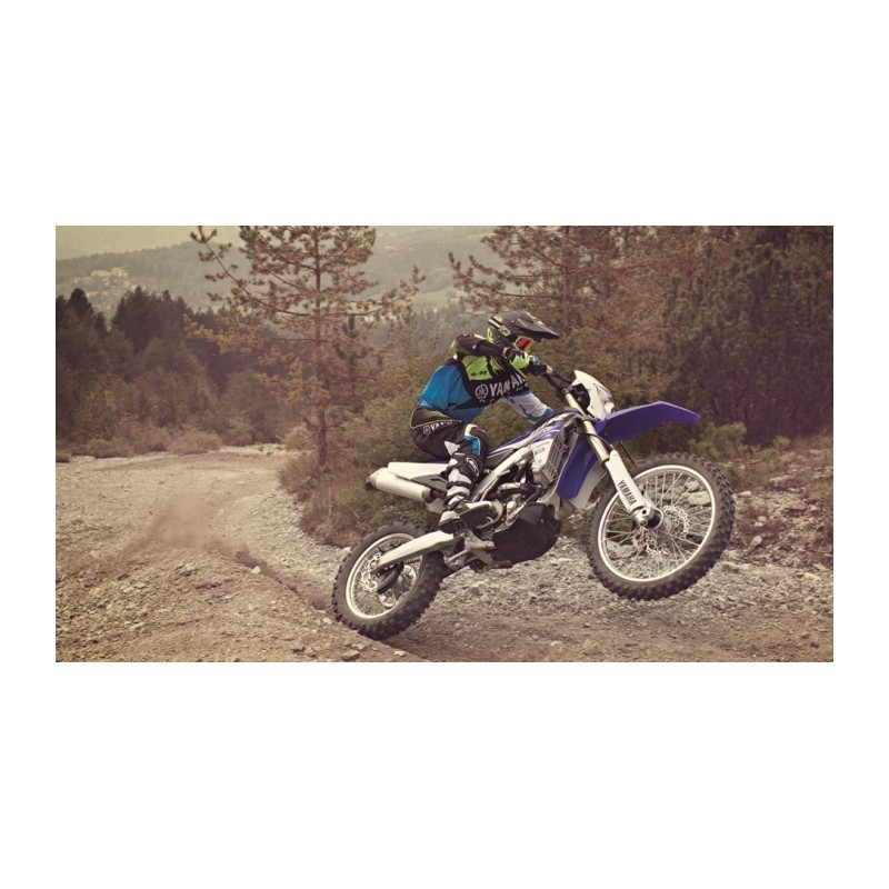 Yamaha WR250LC