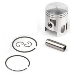 Airsal Piston kit (301-1009)