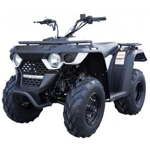 Linhai ATV M150 2x4 T3b
